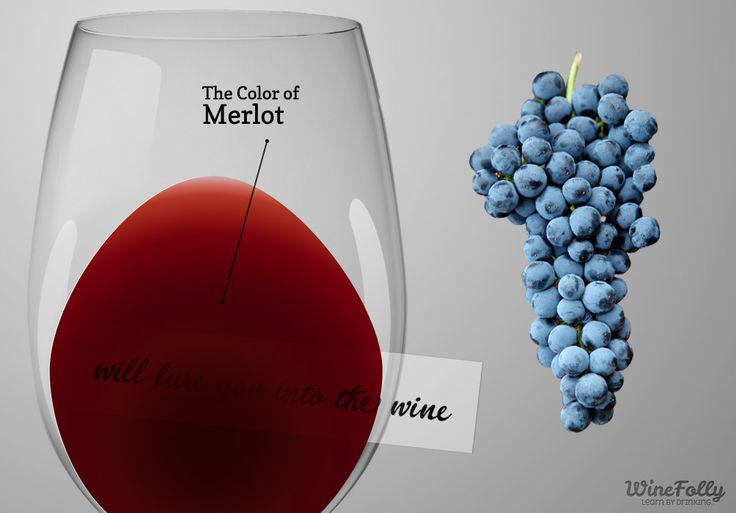 A simple guide on how Merlot wine tastes compared to other red wine. Discover great Merlot food pairings and learn what regions make Merlot best.