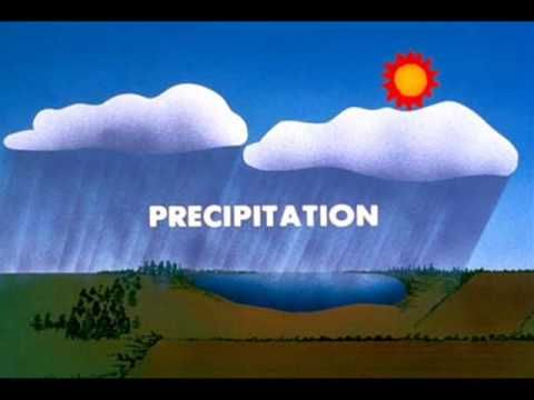 Water Cycle Movie