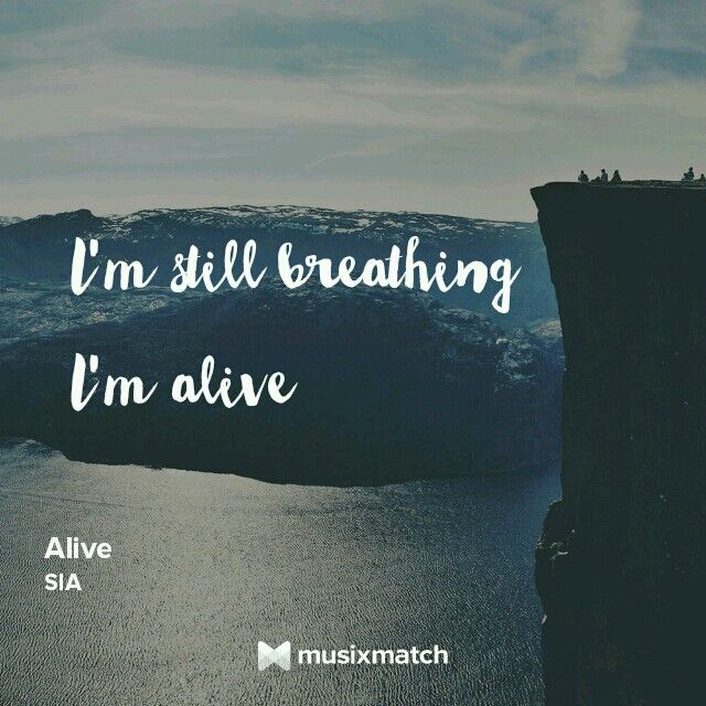 Sia song.alive