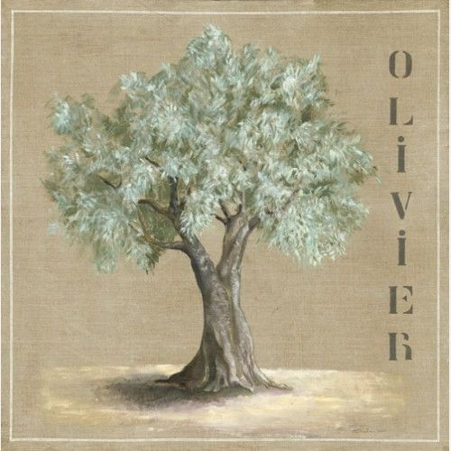 Editions de Visuels olivier