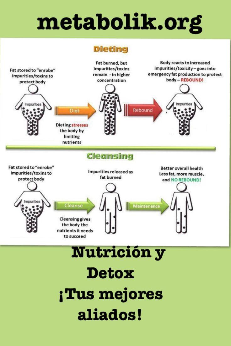 """Cuando haces dieta tradicional, generalmente hay rebote, y empieza el famoso """"efecto yo-yo"""" Es por eso que te recomendamos hacer Detox de manera regular e inteligentemente.  La gráfica lo dice todo! Conoce nuestro concepto integral para lograr tu peso ideal de manera saludable. www.metabolik.org"""