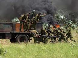 Cangamba Central Angolan bush war