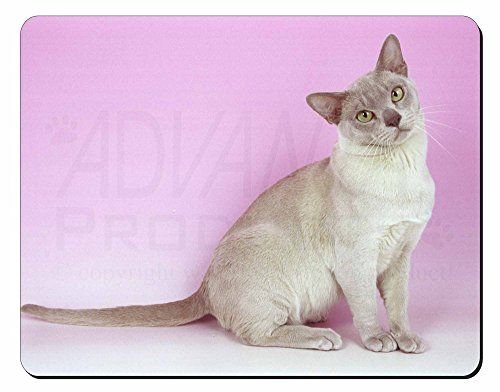 Lilac Burmese Cat Computer Mouse Mat/ Pad Advanta Mouse