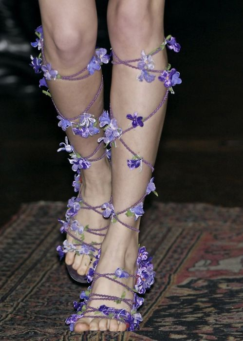 purple, lavender, gladiator, sandal, ethereal, flowers, poppies, violet