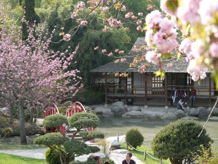 Japanese garden near Compans Cafarelli