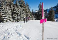 Les Paccots vous proposent différents sentiers en raquettes à neige pour tous les niveaux. (Fribourg, Suisse)