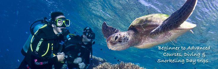 Cairns Dive Centre Learn To Dive - SSI Training Facility - CDC Cairns Scuba Diving Course - Australia