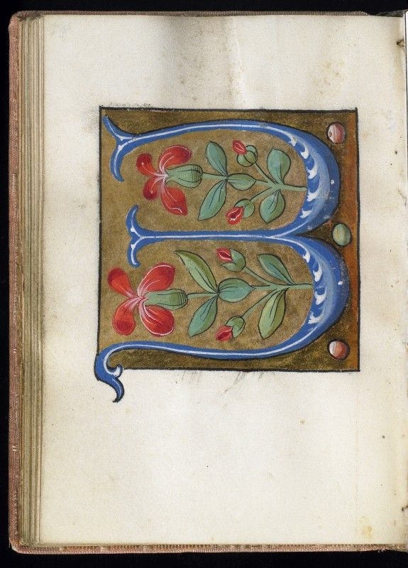 """W"" Leaf from Alphabet Book 