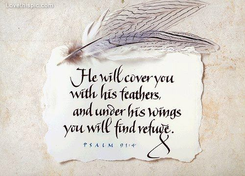 He Will Cover You Love Quotes Jesus Bible