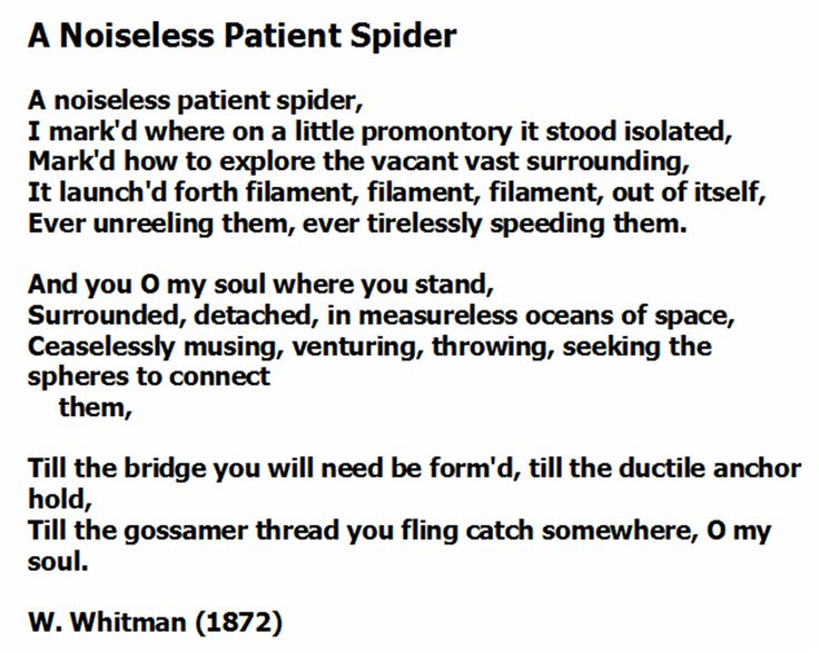 "thesis statement for a noiseless patient spider ""a noiseless patient spider thesis papers admission essays personal statements research proposals nursing papers lab reports law papers thesis."