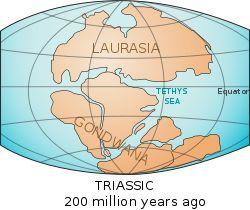 Laurasia & Gongwana— 200 million years ago