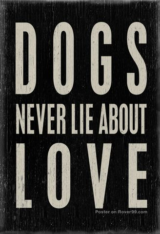 Rover 99 - *Dogs Never Lie | Poster - design by A Place To Love Dogs now in our store at Rover99.com