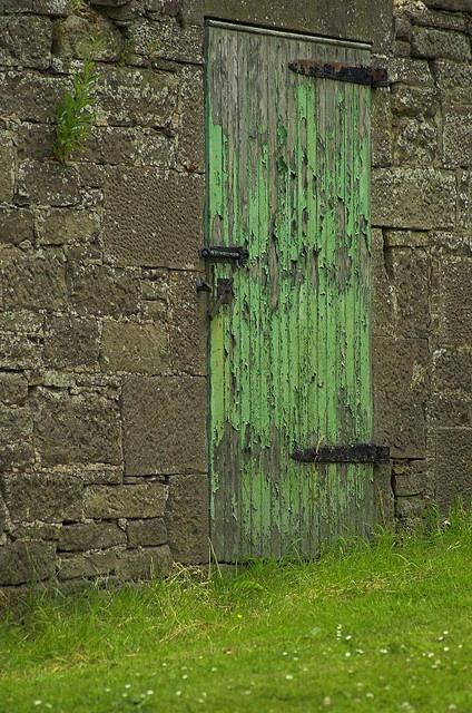 みどり #green #olddoor