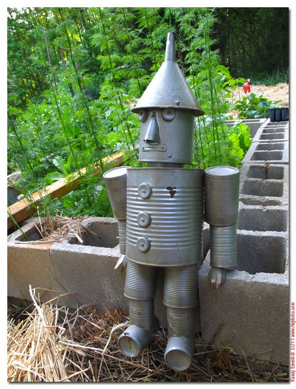 we 39 re going to make a tin man for our garden using this