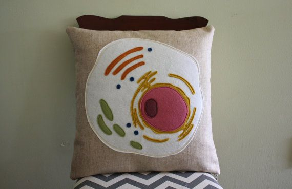 Science Diagram Pillow  Eukaryotic Cell // Science // Biology