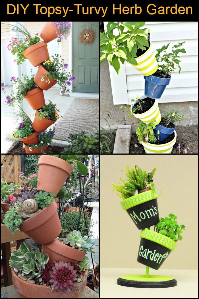 Are you ready to start your own vertical garden?