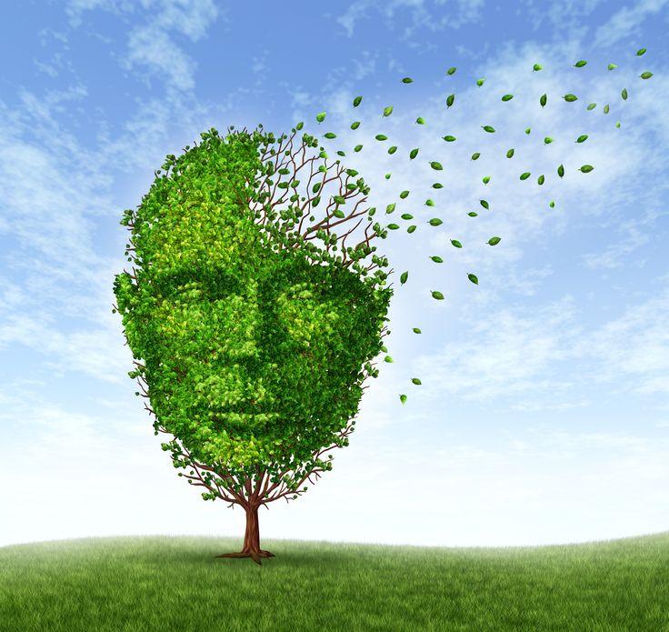 Prevent Dementia Naturally