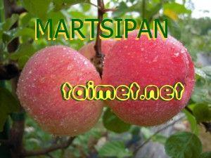 Virolainen herkku-syysomenalajike. Hedelmässä hieno marsipaania muistuttava aromi. Keltainen, peiteväri oranssinpunainen. Suurehko hedelmä. Puu melko voimakaskasvuinen ja terve. Satoikä alkaa verrattaen myöhään. Satoisa. Talvenkestävyys hyvä. Rupea ei ole esiintynyt emopuiden hedelmissä. Tulee myöhään satoikään...