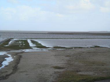 Lytshuis Zilver - B&B - Friesland