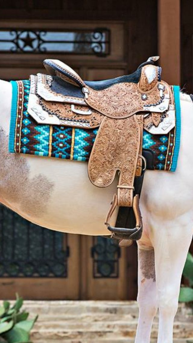 Best 25 western show clothes ideas on pinterest horse for Show me western designs