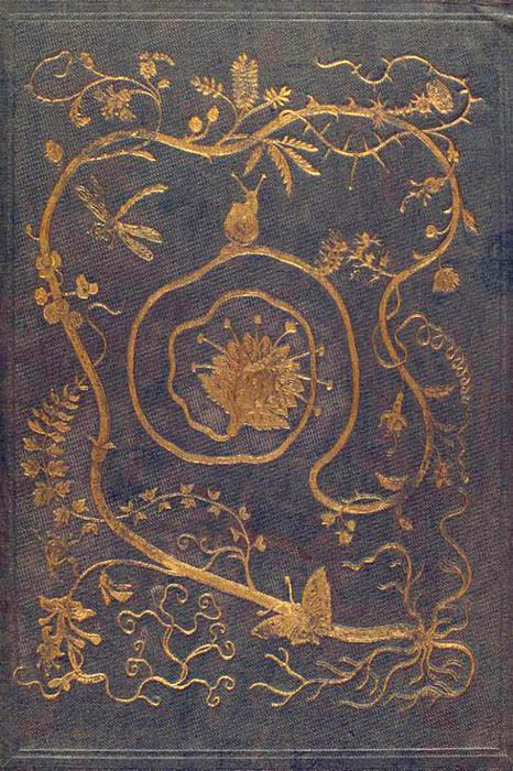 pressed and gilded book cover