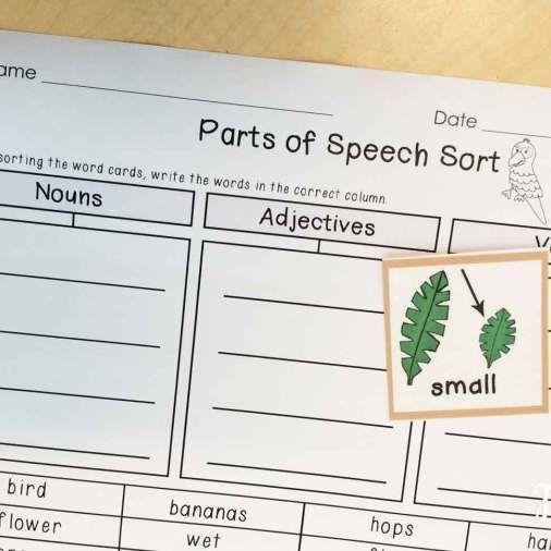 Persuasive Speech Deforestation – Cutting down rain forests