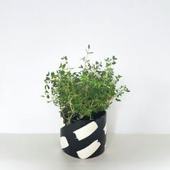 Strokes Pot by JS Ceramics available at For Keeps >>> NZD$35