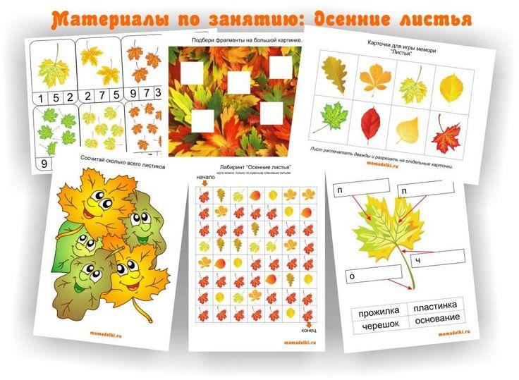 Задания  осенние листья