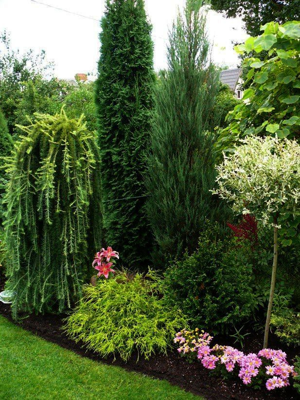 Landscape Ideas For Shaded Backyard from Landscape ...