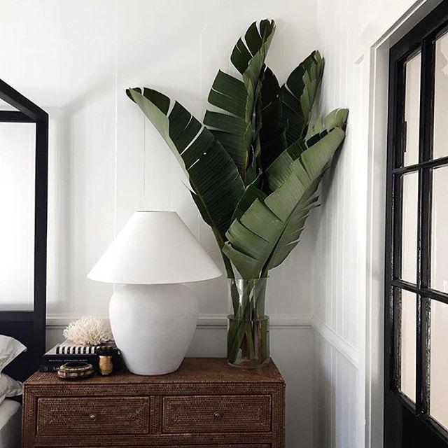 best 25+ tropical bedrooms ideas on pinterest | tropical bedroom