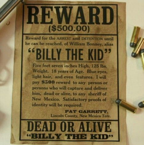 106 best W - Wanted Posteru0027s images on Pinterest American - free wanted poster template for kids