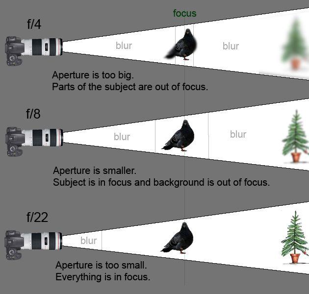 Understanding focal length and aperture value