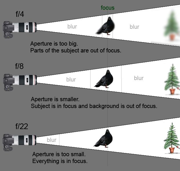 focal length and aperture relationship counseling