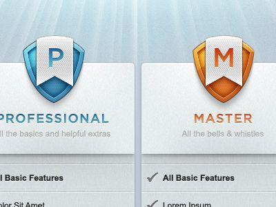 Box design  http://dribbble.com/shots/328253-Pro-Master
