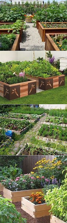 Огород без перекопок - высокие грядки