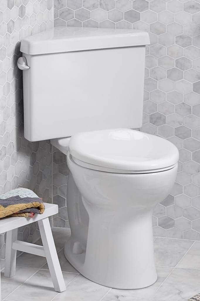 Regent Dual Flush Corner Toilet Idees