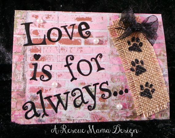 Image Result For Pet Loss Sympathy