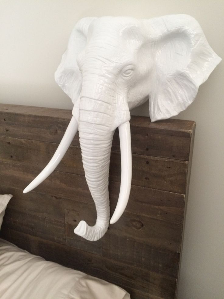 New addition to the rustic room... Elephant head.. Love it..!!
