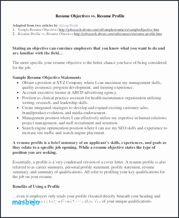 65 Best Of Photos Of Resume Declaration Resume Templates Examples Resume Profile Resume Objective Examples Resume Template Examples