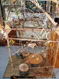 Designing Early Childhood Australia: Autumn House