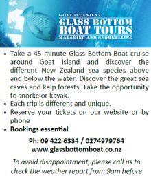 Glass Bottom Boat, Goat Island, Rodney