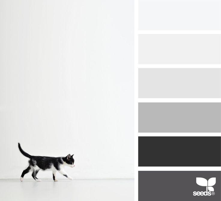 Creature Tones - http://www.design-seeds.com/creatures/creature-tones-2