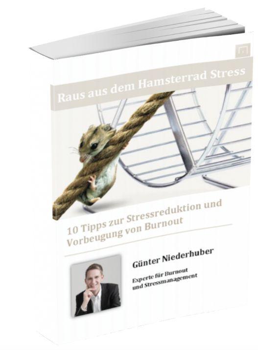 """Du hast Stress und findest keine Möglichkeit aus dem Hamsterrad Stress auszusteigen? Dann hole Dir das kostenlose E-Book """"Raus aus dem Hamsterrad Stress"""" unter http://burnout-stressmanagement.at/gratis-downloads/"""