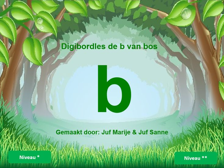 de b van bos
