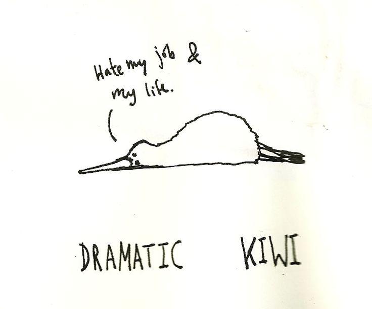 9 besten kiwibirds Bilder auf Pinterest  Funny shit Kunst Ideen
