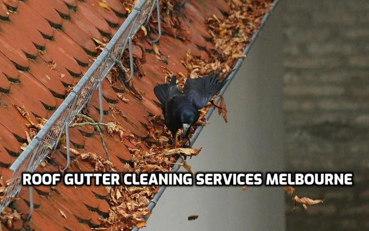 Look At Our Web Page For Far More Involving This Breathtaking Photo Roofgutters In 2020 Cleaning Gutters Gutters Gutter