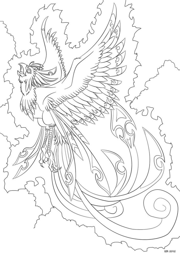 Baby Phoenix Coloring Pages Food Ideas Pictures Of Phoenix Bird Drawings Coloring Books
