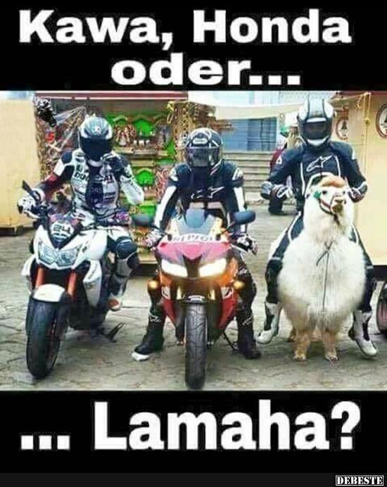 Kawa, Honda oder... Lamaha? | Lustige Bilder, Sprüche, Witze, echt lustig