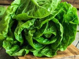 Romaine lettuce: Nutritional information and health benefits  ||  Learn about the nutritional background and potential health benefits of romaine lettuce, including some tips for including it in meals. https://www.medicalnewstoday.com/articles/319725.php?utm_campaign=crowdfire&utm_content=crowdfire&utm_medium=social&utm_source=pinterest