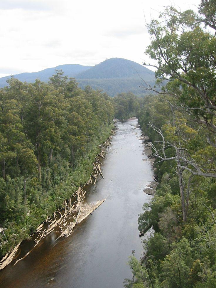 Huon River, Tahune Forest, Tasmania